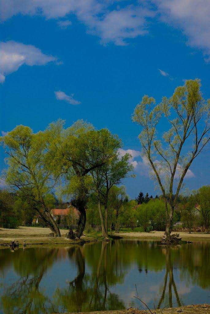 A tó és környezete
